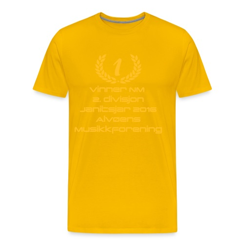vinner 2 div janitsjar16 - Premium T-skjorte for menn