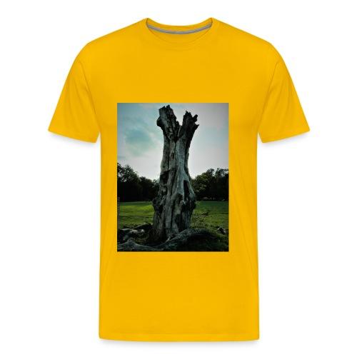 P1050818 (2) - Men's Premium T-Shirt