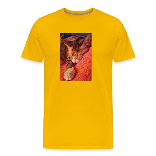 Honey_1 - Männer Premium T-Shirt