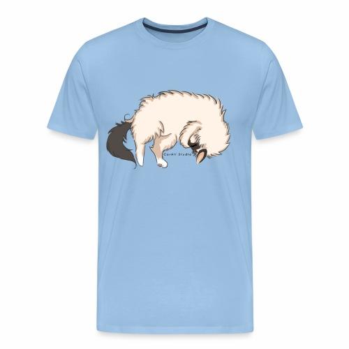 Sleeping Sacred Birman Cat - Men's Premium T-Shirt
