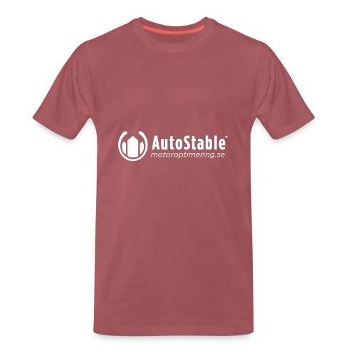 T-Shirt med bra power - Sverige - Premium-T-shirt herr