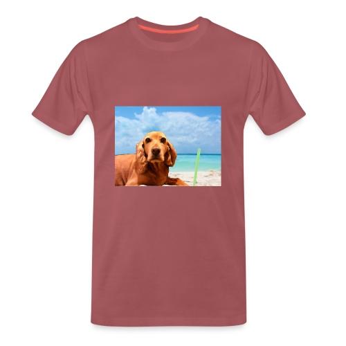 perry-fotoscompleta-jpg - Camiseta premium hombre