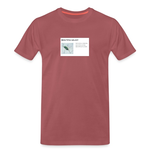 BEAUTIFUL UNIVERSE - Miesten premium t-paita