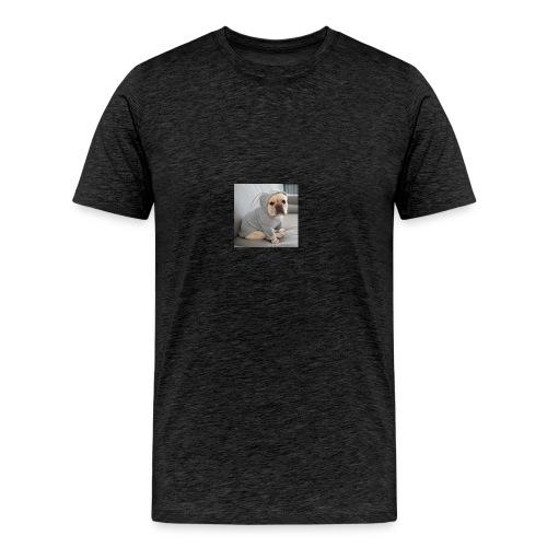 Bulldoge im Hase - Männer Premium T-Shirt
