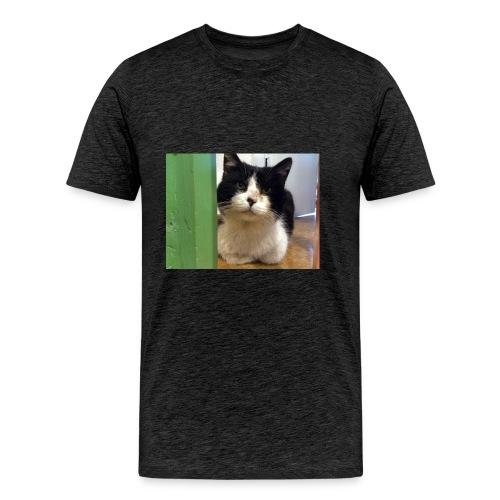 Kater Teddi - Männer Premium T-Shirt