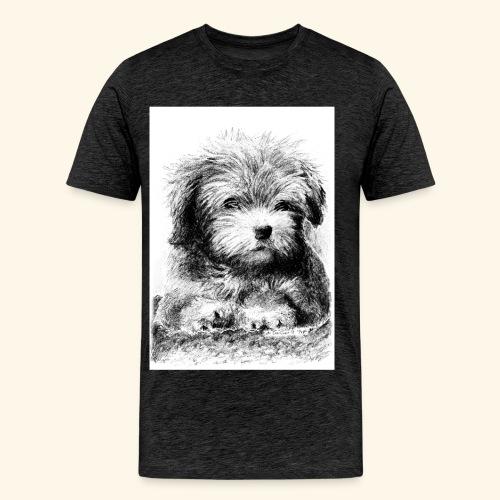 Cotton havanna - Miesten premium t-paita