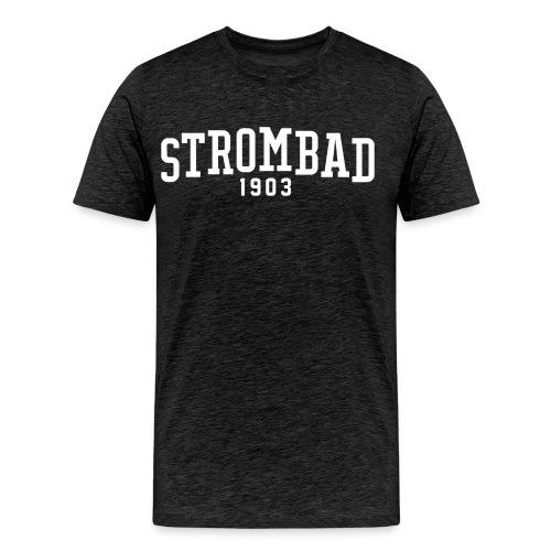 lido di Krido Strombad College - Männer Premium T-Shirt