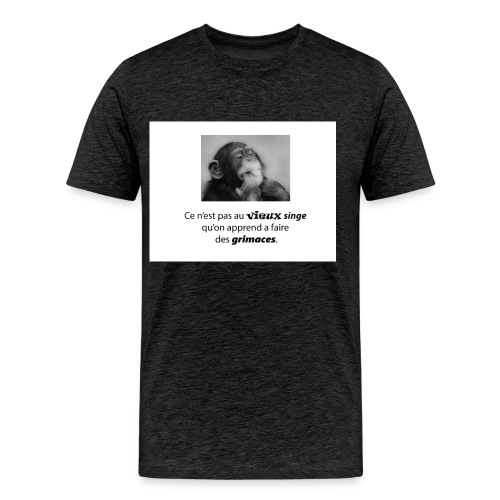 vieux singe et grimace 2 png - T-shirt Premium Homme