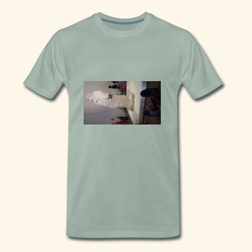 statut - T-shirt Premium Homme