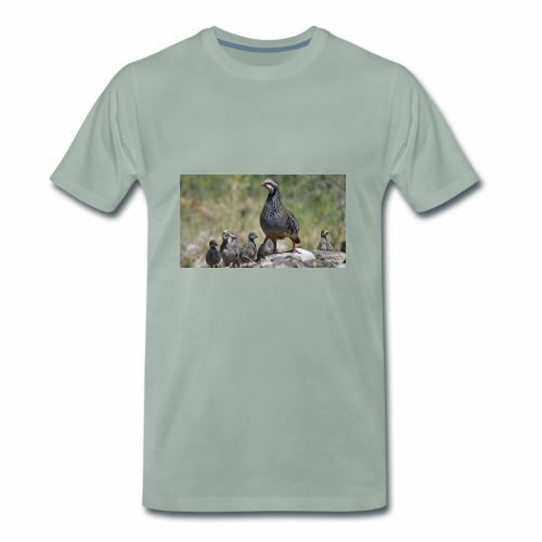 perdiz - Camiseta premium hombre