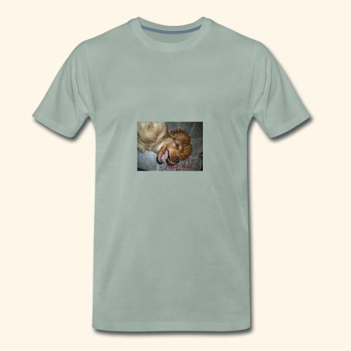 snäll hunden - Premium-T-shirt herr