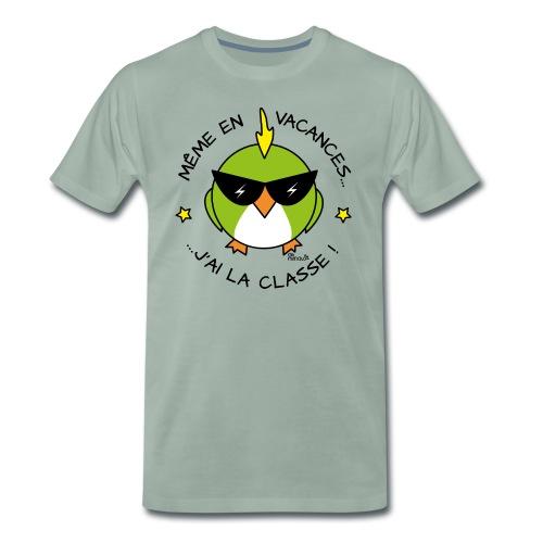Oiseau Lunettes, Cadeau Instit, J'ai la Classe - T-shirt Premium Homme