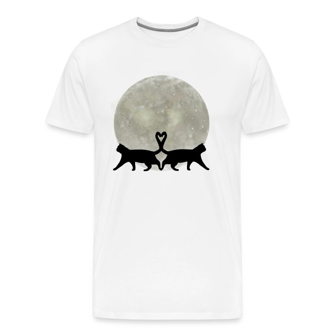 Cats in the moonlight