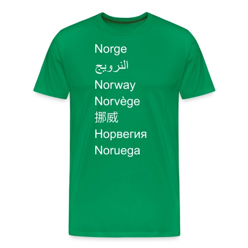 FN-Norge - plagget.no - Premium T-skjorte for menn
