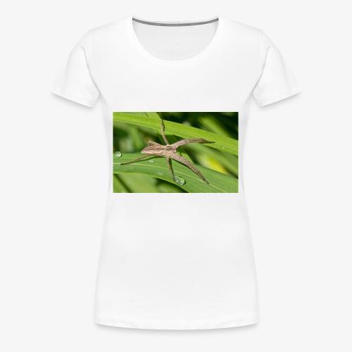 Spinne auf dem Blatt - Frauen Premium T-Shirt