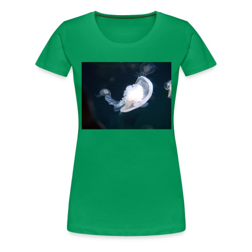 Leijailen - Naisten premium t-paita