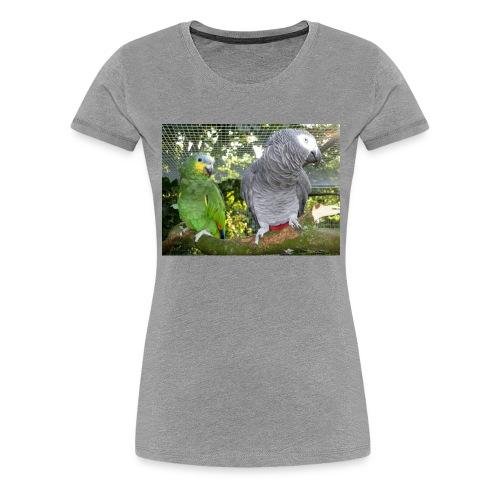 Amazone og grå - Dame premium T-shirt