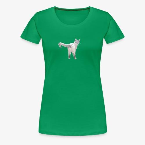 snow1 - Women's Premium T-Shirt