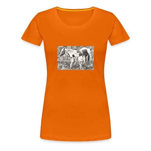 Pinto mit Fohlen - Frauen Premium T-Shirt