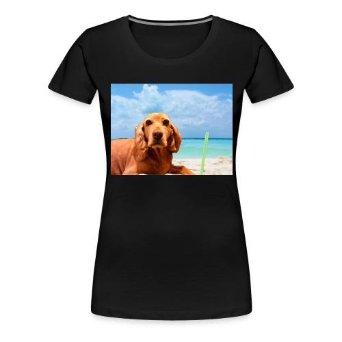 perry-fotoscompleta-jpg - Camiseta premium mujer