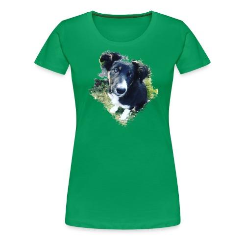 colliegermanshepherdpup - Women's Premium T-Shirt