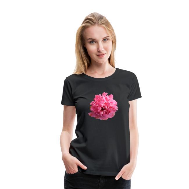 Pfingstrose rosarot Blume