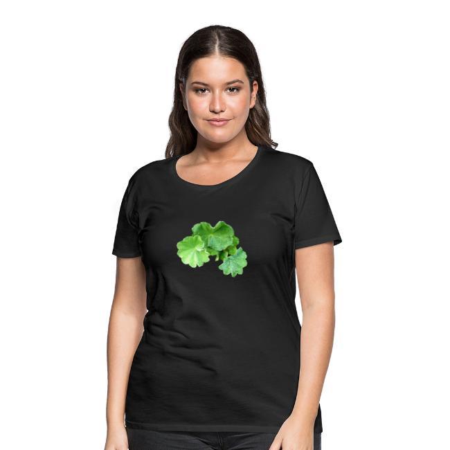 Frauenmantel Heilpflanze