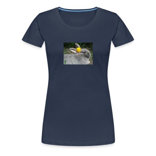 StarDandelion - Frauen Premium T-Shirt