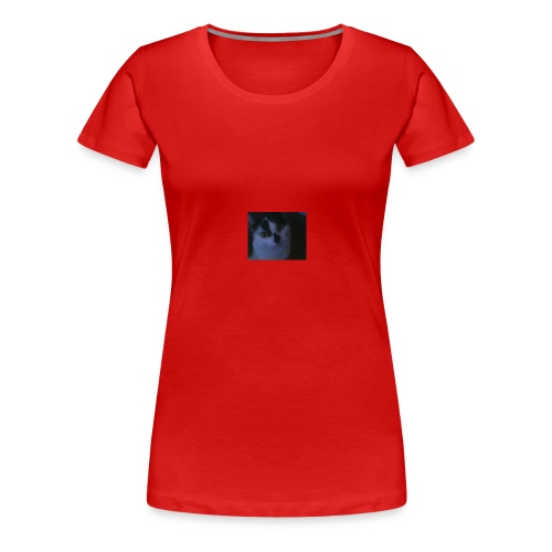 39717 122429427802638 1943810 nTILLY - Women's Premium T-Shirt