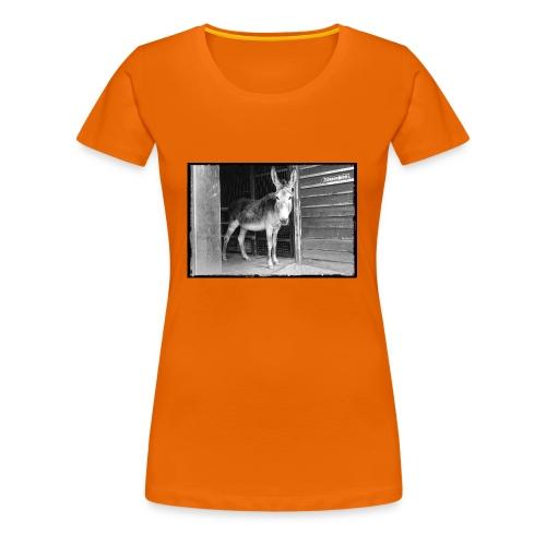 Zickenstube Esel - Frauen Premium T-Shirt