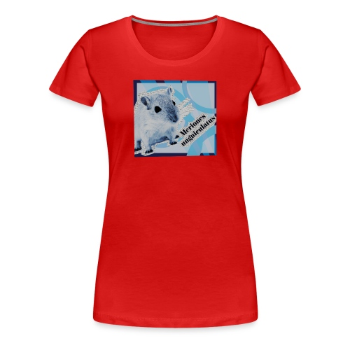 Gerbiili - Naisten premium t-paita