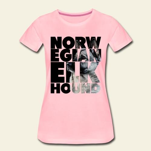 NASSU Norjanharmaa 2 - Naisten premium t-paita