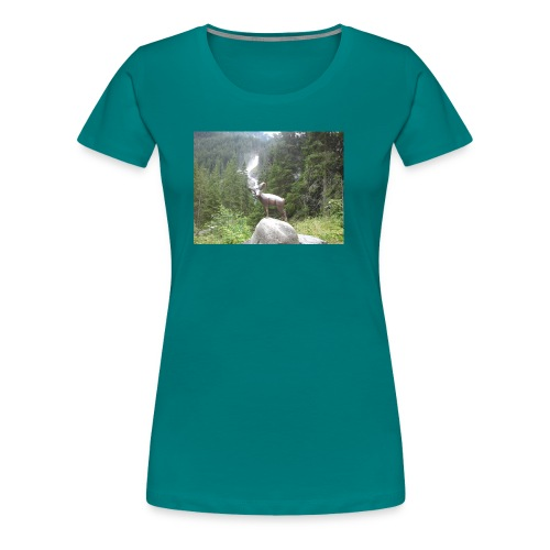 2012 08 16 15 19 30 - Frauen Premium T-Shirt