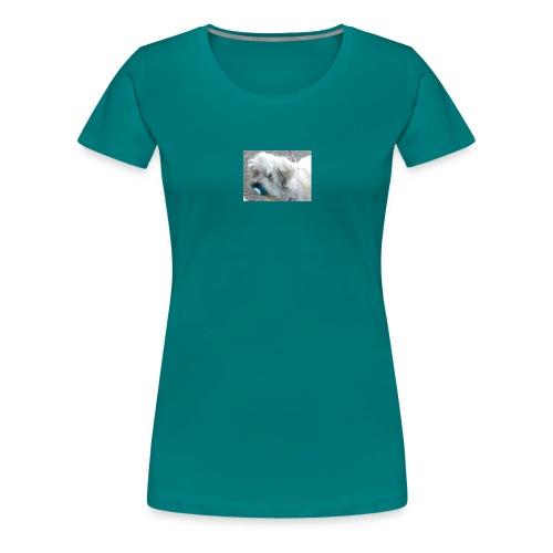 dog with dummy - Women's Premium T-Shirt