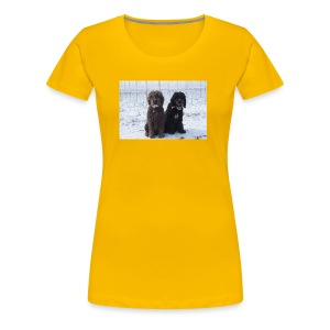 Barbets in the snow - Women's Premium T-Shirt