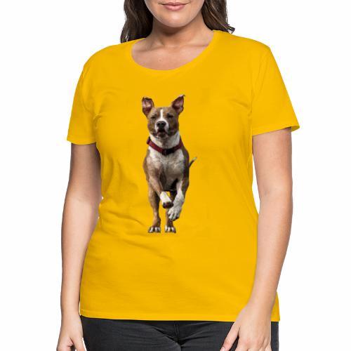 American Stafford - Frauen Premium T-Shirt
