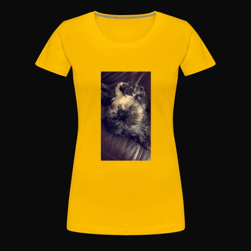 Bobby Pooch merchandise - Women's Premium T-Shirt