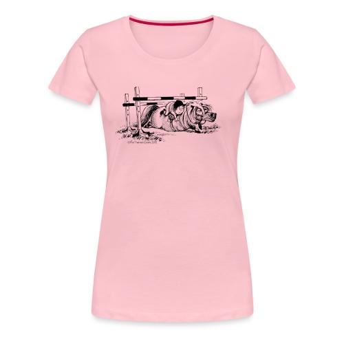 PonyFall Thelwell Cartoon - Women's Premium T-Shirt