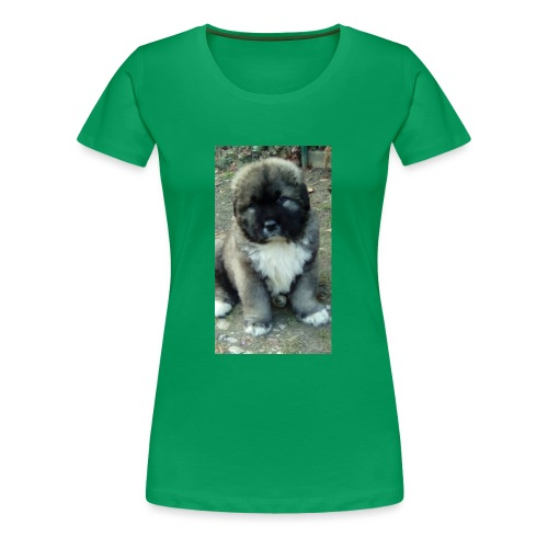 Kolekcja Kazan - Koszulka damska Premium