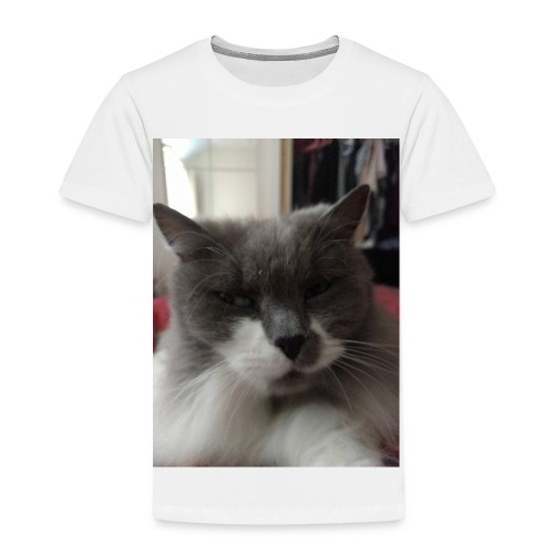 Moody cat - Kids' Premium T-Shirt