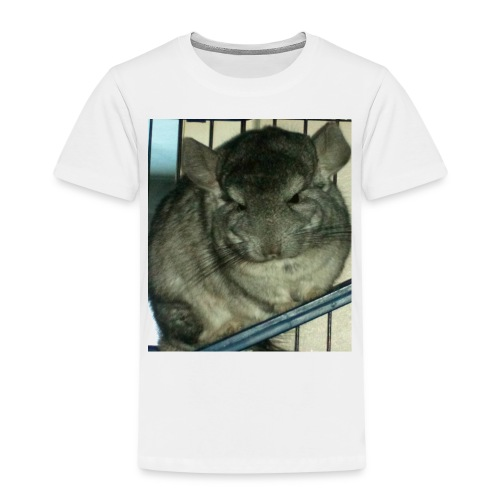 morko - Lasten premium t-paita
