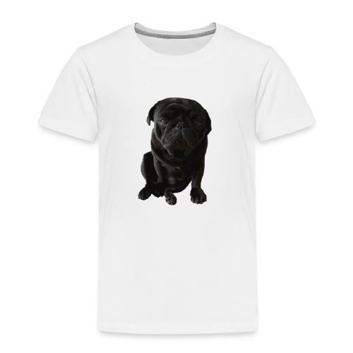 Otis_drukwerk_proef_zonder_doos - Kids' Premium T-Shirt
