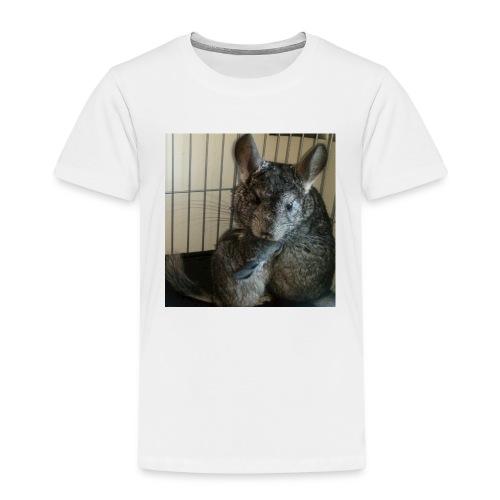 sisu - Lasten premium t-paita