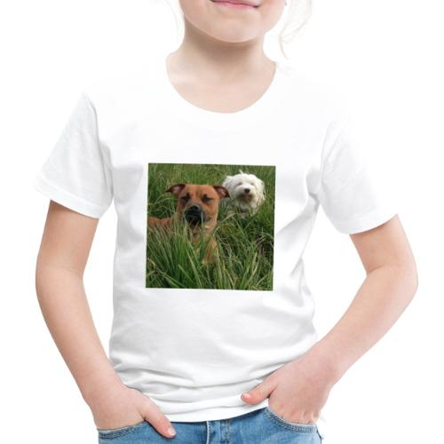 15965945 10154023153891879 8302290575382704701 n - Kinderen Premium T-shirt