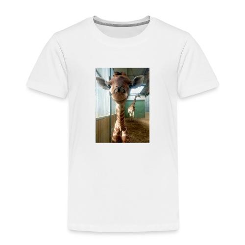 17425152 1849103548639612 2918584422263222532 n - Camiseta premium niño