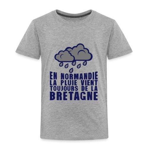 en normadie pluie vient bretagne nuage - T-shirt Premium Enfant