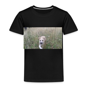 love walks - Kids' Premium T-Shirt