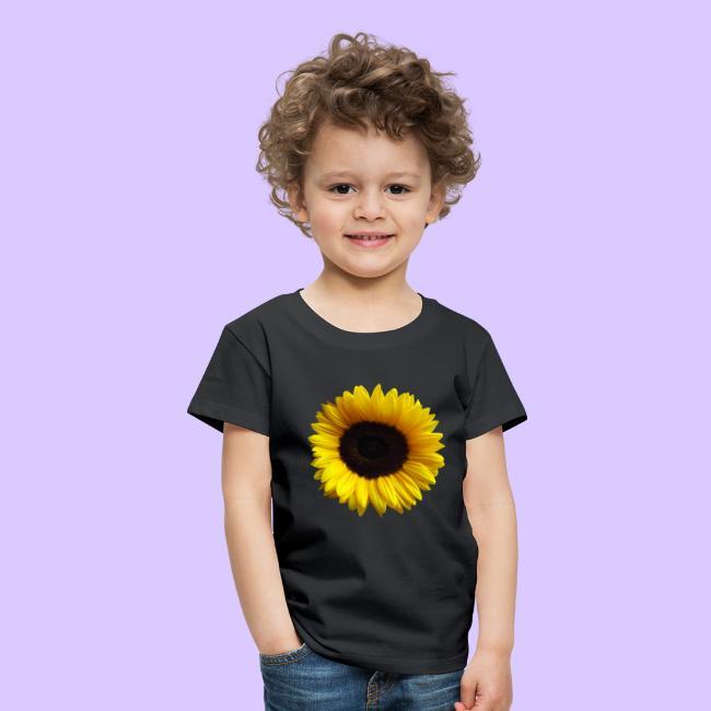 Sonnenblume, Sonnenblumen, Blume, Blüte, floral