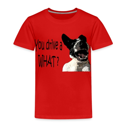 You Drive A What - Kids' Premium T-Shirt