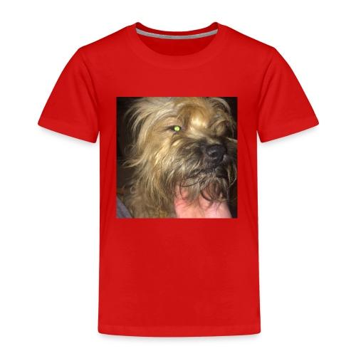 22853199 1846482322309830 3834843008679082282 n - T-shirt Premium Enfant